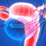 女性生殖器と金属の関係における考察の必要性について投げかけた論文