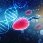 男性因子不妊症における酸化還元電位の予測可能性を精液分析と組み合わせて評価する:多施設共同研究